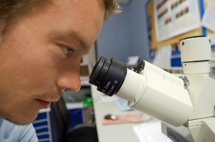 scientist-and-microscope-focus